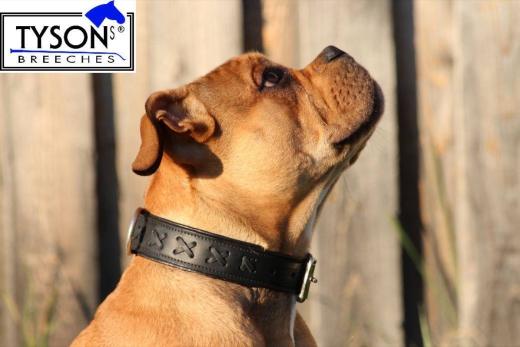 Hundhalsband Leder geflochten o Zierkreuz M L XL Schwarz / Weiss