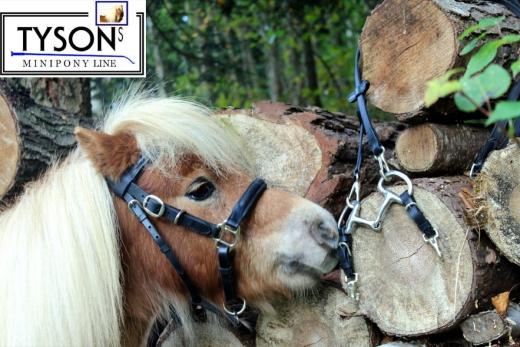 Wanderreithalfter nur noch Gr. Pony Leder + Snap ! Handpferd