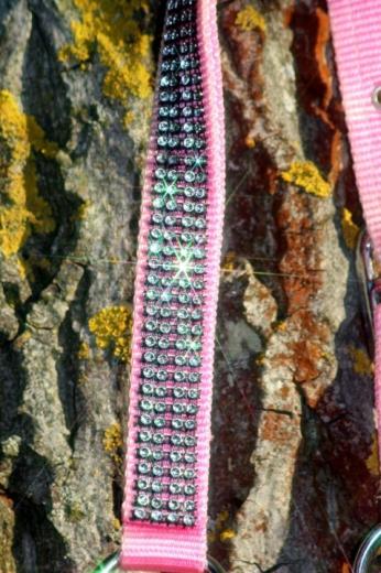 Nylon Halfter Hilly Glitzer Minishetty Baby Rosa Gr. MS S