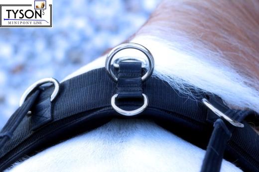 Longiergurt 16 Ringe f. Doppellonge Minishetty / Shetty nur 10 c
