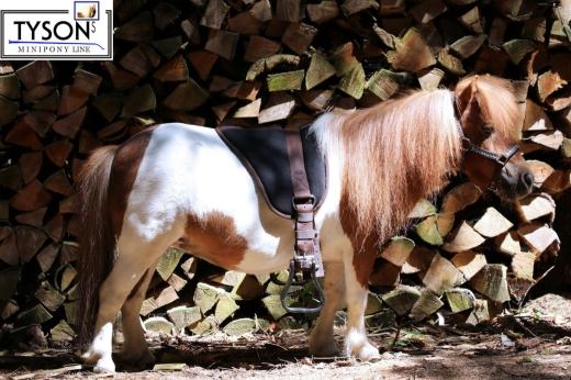 Barepad Reitkissen Braun Minishetty Shetty Pony Sattel
