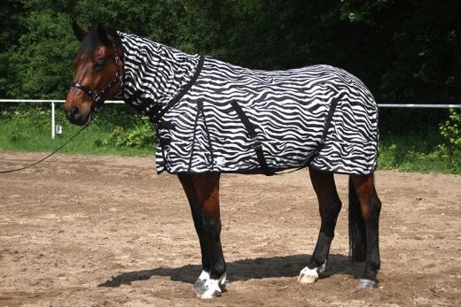 Zebra Fliegendecke Mash mit Halsteil   145 155 165 cm
