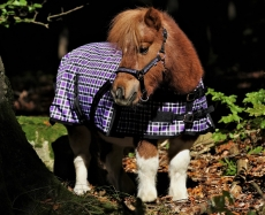 1200 Denier Outdoordecke Regendecke Fleece Futter Lila Karo 65 75 85 95 100 cm