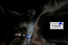 Trense ASTORIA Schwarz London/Congnac o Braun Swarowski Anatomisch Leder Lack VB WB X- Full