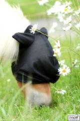 Fliegenhaube  MMS MS Shetty Fohlen Fliegenmaske mit o. ohne Ohre