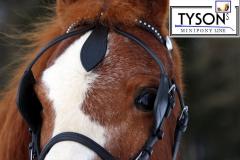 Fahrtrense Fahrzaum Pony Scheuklappen Kopfstück REST RAUS