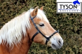 Kappzaum Leder Shetty Pony Vollblut  Warmblut VB WB