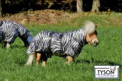 Ekzemerdecke Zebra 60 70 80 90 100 cm Minishetty Shetty