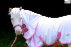 Minishetty Shetty Fliegendecke Weiß- Rosa 70 80 90 100 110 cm + Hals abnehmbar