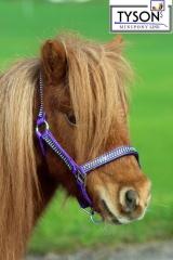 Halfter Nylon LILA GLITZER !  MMS  Fohlen MInishetty Shetty Pony