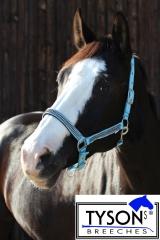 Halfter  Nylon Hellblau  GLITZER ! Shetty Pony MS S P VB WB XFul