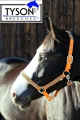 Halfter  Nylon Orange GLITZER ! Shetty Pony MS S P VB WB Extra F
