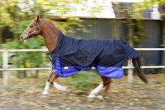 600 D High EXTA Neck Regendecke ohne Füllung Fleece Lining 145 155 165 Schwarz Royal