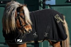 Abschwitzdecke SISSY Paradedecke 65 75 85 95 100 cm Minishetty Shetty Falabella